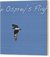 An Ospreys Flight Wood Print