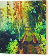 An Uncertain Path Wood Print