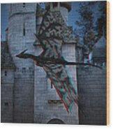 Anaglyph Dragon Wood Print