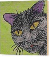 Anahs The Fairy Cat Wood Print