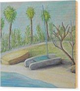 Anastasia Island Wood Print