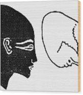Anatomy: Human Cranium Wood Print