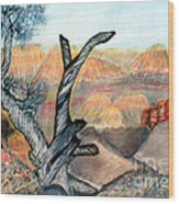 Anceint Canyon Watcher Wood Print