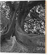 Ancestor Wood Print
