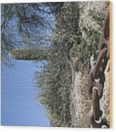 Anchor Chain In The Desert Wood Print