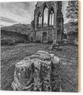 Ancient Abbey Wood Print