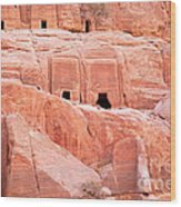 Ancient Buildings In Petra Wood Print