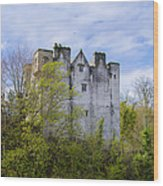 Ancient Castle Donegal Wood Print
