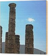 Ancient Delphi 16 Wood Print