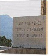 Ancient Delphi 18 Wood Print