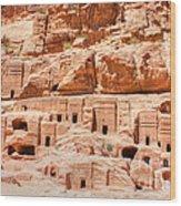 Ancient Dwellings At Petra Wood Print