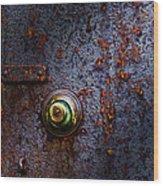 Ancient Entry Wood Print by Tom Mc Nemar