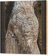 Ancient Expression Of Beauty Wood Print