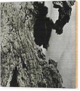 Ancient Goddess Wood Print