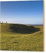 Ancient Hill Of Tara In The Winter Sun Wood Print