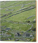 Ancient Ireland Wood Print