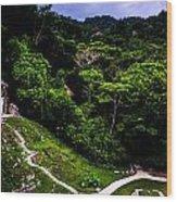 Ancient Maya Ruins Wood Print