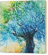 Ancient Olive Tree  Athenas Gift  Wood Print