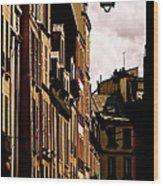 Ancient Paris Wood Print