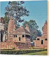 Ancient Temple Complex  - Amarkantak India Wood Print