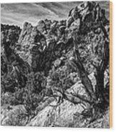 Ancient Witness Wood Print
