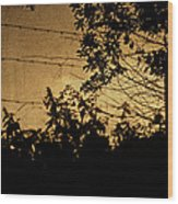 And Then The Night Comes Wood Print