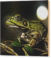 And This Frog Can Sing Wood Print by Bob Orsillo