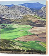 Andalucia Landscape In Spain Wood Print