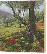 Andalucian Olive Grove Wood Print