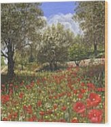 Andalucian Poppies Wood Print