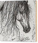 Andalusian Horse Drawing 2 Wood Print