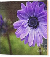 Anemone Kissed Wood Print
