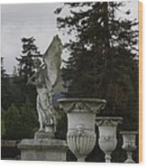 Angel And Garden Urns Wood Print