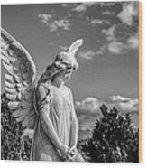 Angel At The Heredia General Cemetery Wood Print