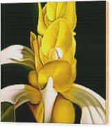 Angel Flower Wood Print
