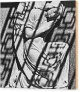 Angel In The Shadows 2 Wood Print