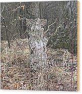 Angel In The Woods Wood Print by Marisa Horn