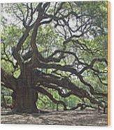 Angel Oak II Wood Print