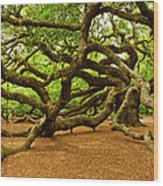 Angel Oak Tree Branches Wood Print