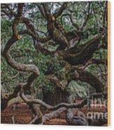 Angel Oak Tree Treasure Wood Print