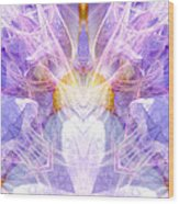 Angel Of Beauty Wood Print