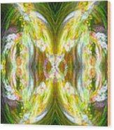 Angel Of Peace Wood Print