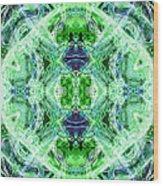Angel Of The Earth Wood Print