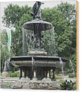 Angel Of The Waters Fountain Wood Print