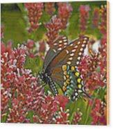 Angel Of The Wildflowers Wood Print