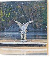 Angel On A Misty Lake  Wood Print