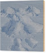 Angel On Earth Wood Print