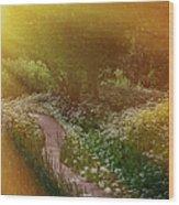 Angel Rays. Follow The Sun Wood Print