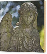 Angel With Broken Arm II Cave Hill Cemetery Louisville Kentucky  Wood Print