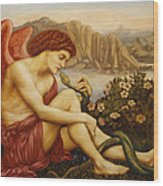 Angel With Serpent Wood Print by Evelyn De Morgan